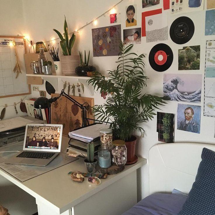 """carlos auf Instagram: """"Ich möchte für mein Zimmer eine neue große Pflanze k…"""