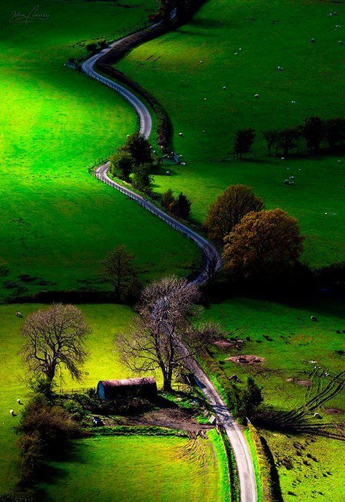 Take the road less travelled,,you never know where it will lead :)- Newlands Valley, Lake District, England