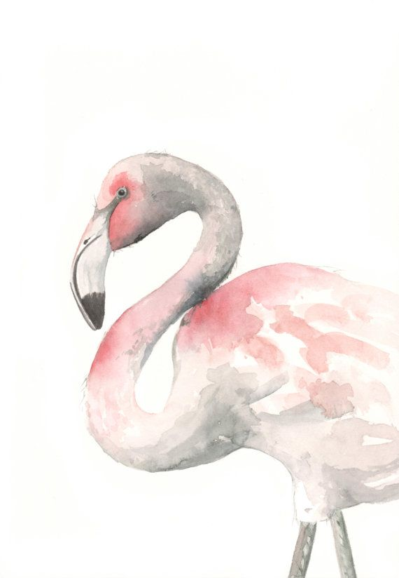 Flamingo Painting -F075 watercolor painting bird wildlife nature art pink - Archival print of watercolor painting 5 by 7 print