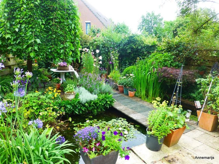 Small Patio Garden In The Netherlands With A Lot Of Plants In Pots And  Containers #agapanthus #roses #small Gardens #town Gardens | Pinterest |  Small ...