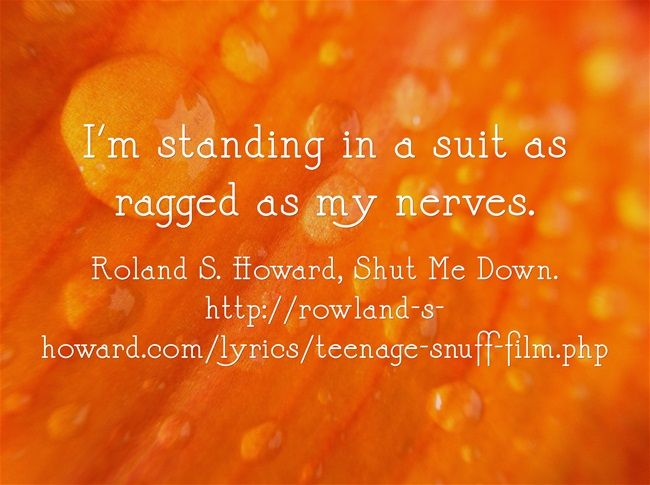 I'm standing in a suit as ragged as my nerves. Roland S. Howard, Shut Me Down, on Teenage Snuff Film (2001) and Pop Crimes (2009).