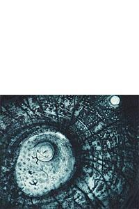 Jeff Gardner - Blue Noise, 2011