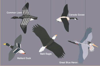 Skyflight Mobiles: Wilderness Birds, Mobiles Design, Mobiles Galleries, Birds Mobiles, Tops Mobiles, Skyflight Mobiles, Wild Birds, Kinetic Mobiles, Hanging Mobiles