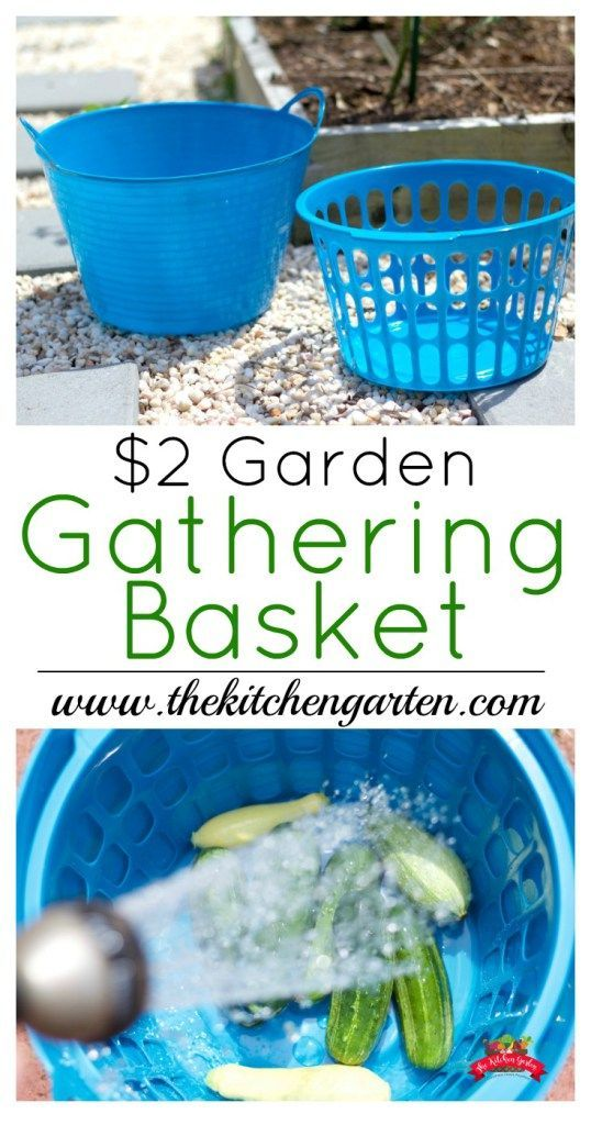 Use this Dollar Store Gathering Basket to hold your fresh veggies and give you an easy place to wash them. There's no wasted water either! >>> To view further for this article, visit the image link. #GardeningIdeas