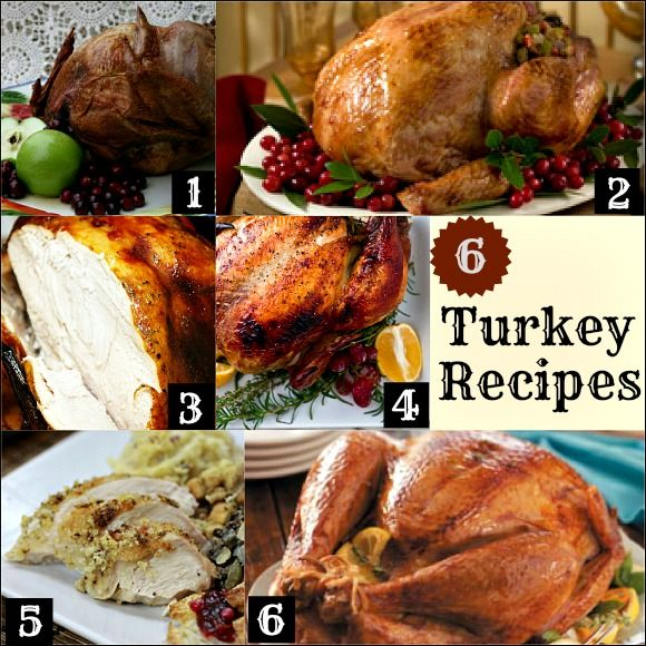 6 Turkey Recipes for Thanksgiving :: PocketChangeGourmet.com I want to try the one with orange