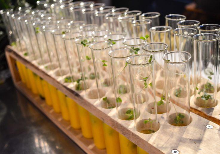 La Place stond 21 en 22 oktober op het event  food inspiration day 2014. Met power-injecties, #vitamine shotjes en prachtige natuurlijke drankjes zorgde wij ervoor dat smaken op vele tongen explodeerde! #laplace #foodinspirationday #foodinspriration #food #event #cress #koppert #koppertcress #groente #fruit #smoothie #injecties #natuurlijk