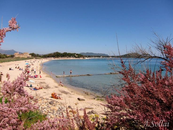 Nora  - Spiaggia della Banchina  (photo courtesy by Antonio Sollai)