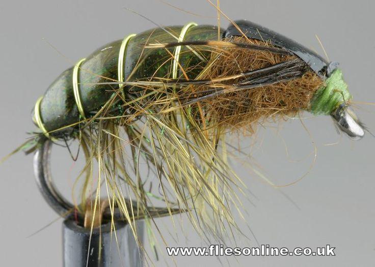 Olive Gammarus