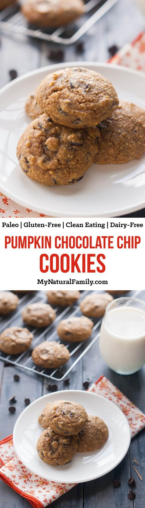 paleo-pumpkin-cookies-with-chocolate-chips-recipe