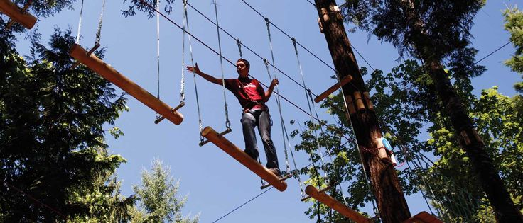Wild Play - Experience the lower mainland's thrilling outdoor attractions. Climb, zip, jump, and swing, in a cool nature-based escape.