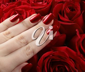 Red metallic manicure over the roses background.