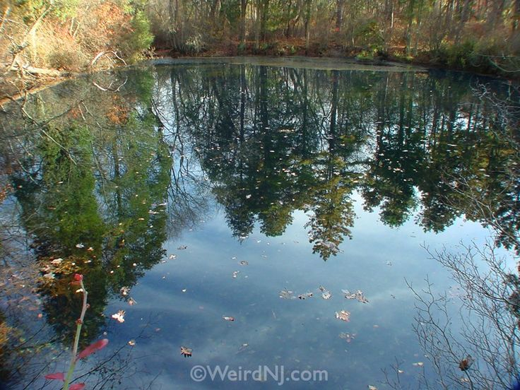 10 best images about Pine Barrens on Pinterest | Ghost ...