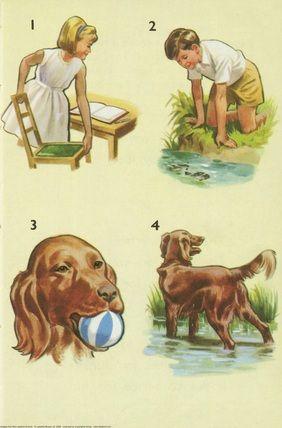 Write, fish, ball, dog - Peter And Jane, I Like To Write ...