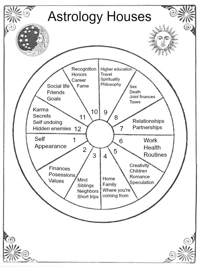 We're moving on to the astrological houses in this lesson of Star School. The 12 astrological houses represent different areas + experiences of your life. #astrology #StarSchool