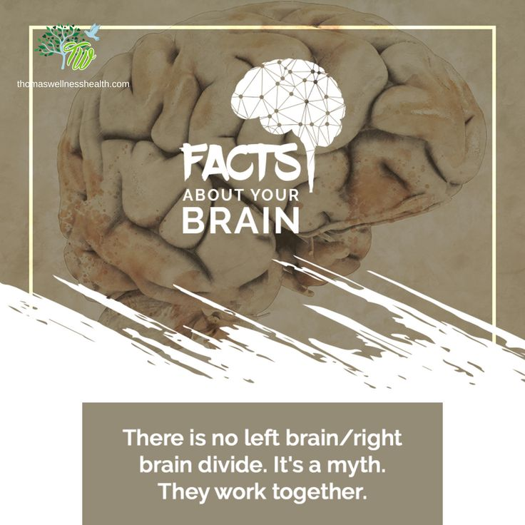 Is the brain really divided or do they work together?