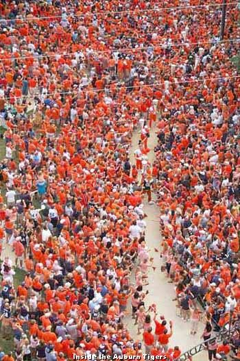 Tiger walk. No matter who your team is, this remains one of the coolest traditions in college football. War Eagle!