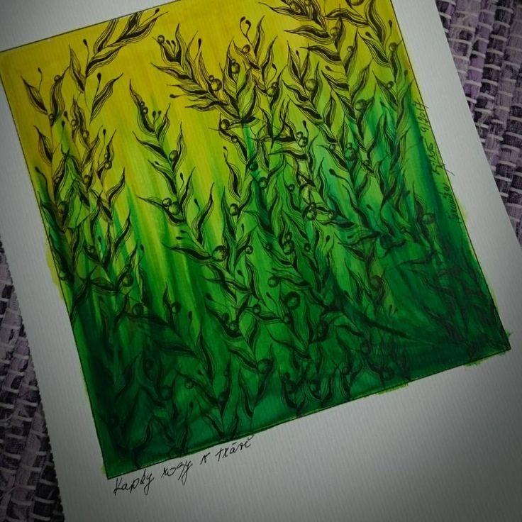 "8 To se mi líbí, 1 komentářů – Veronika Šiflová (@veja.beruska) na Instagramu: ""Kapky rosy v trávě…"""