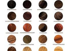 Professional Hair Color Brands