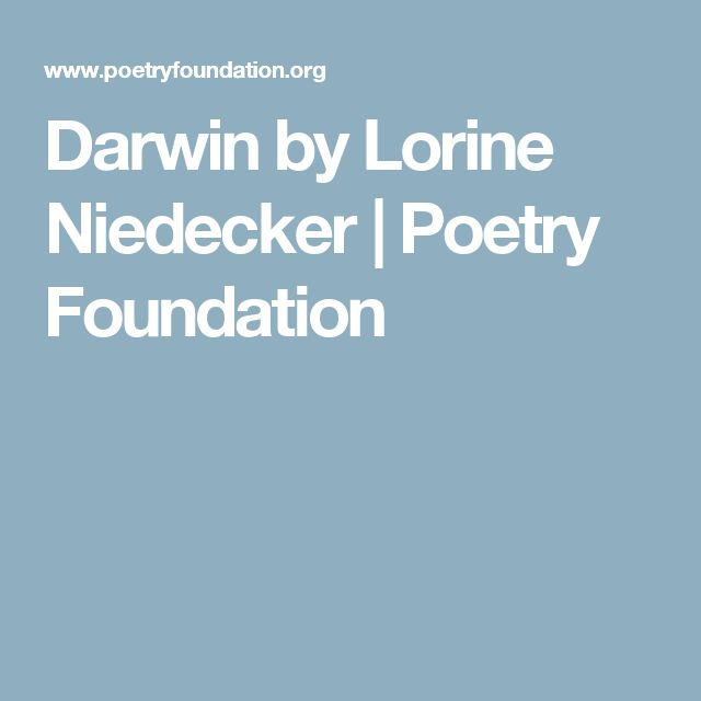 Darwin by Lorine Niedecker | Poetry Foundation