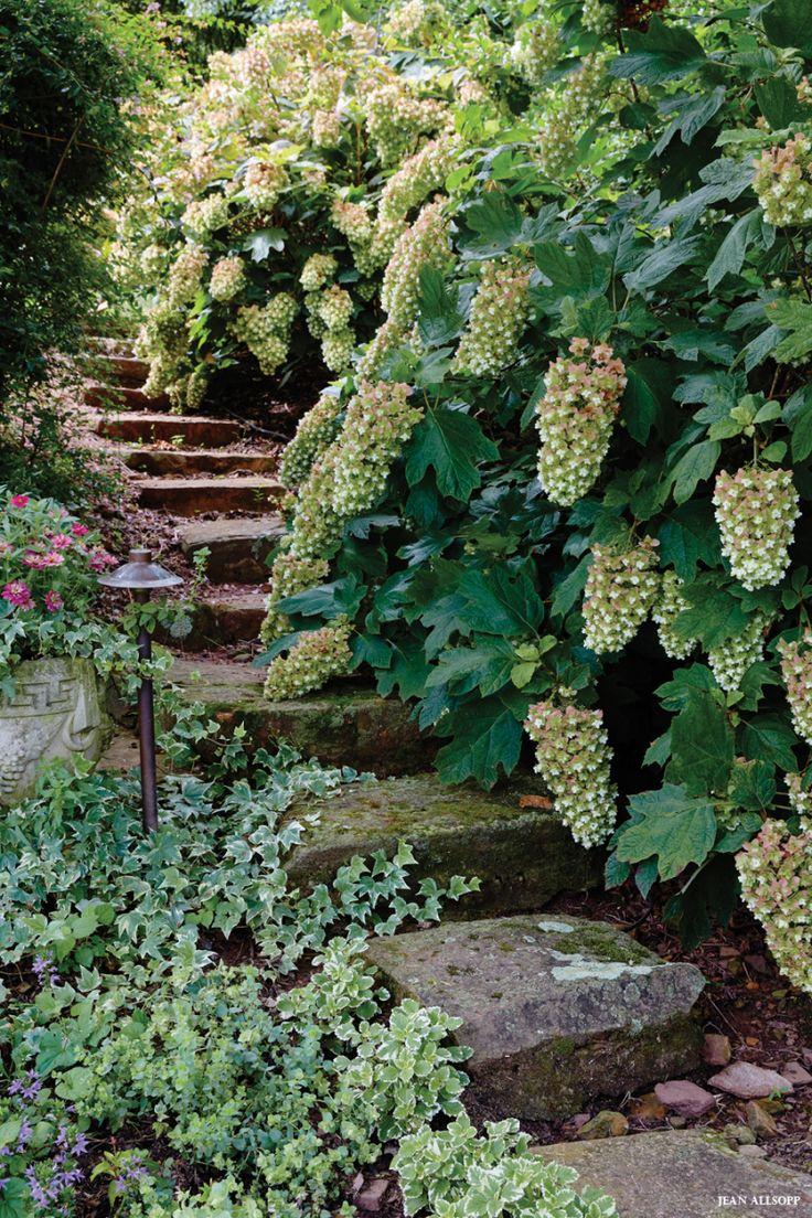 Garden of Small Delights