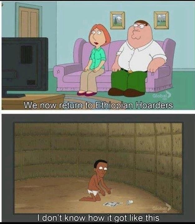 Need help writing essay on 'Family Guy' and english show 'My Family'.......?