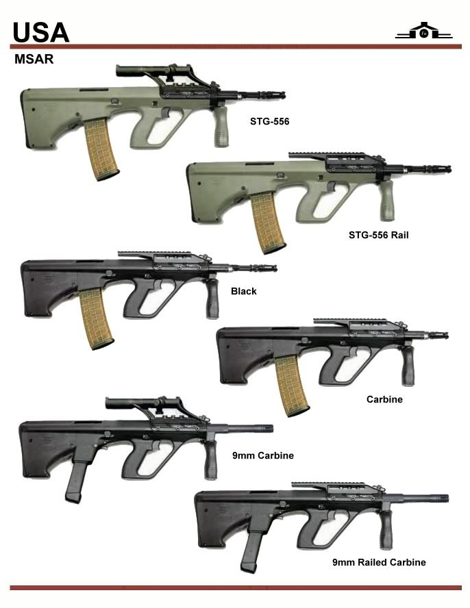 MSAR STG-556 and 9mm Carbine
