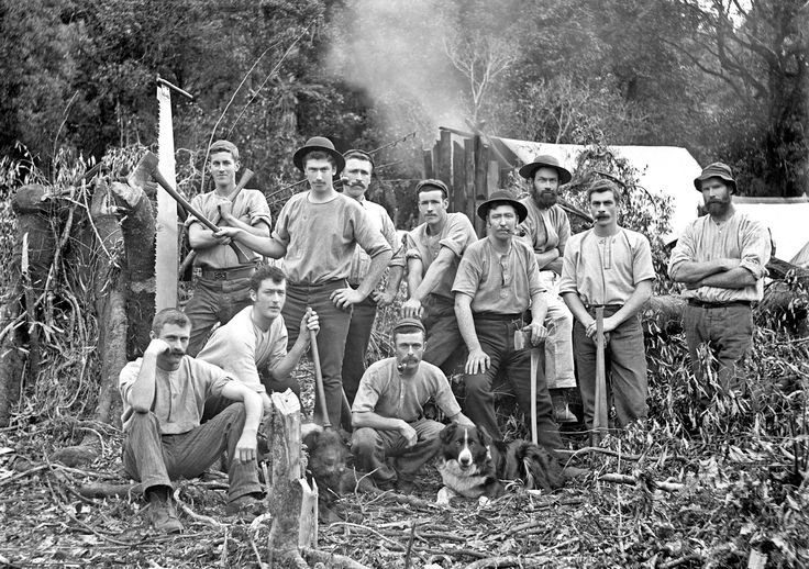 Timber industry workers, Taranaki district, early 1900s. Photo: James McAllister  Courtesy Alexander Turnbull Library, Wellington, New Zealand