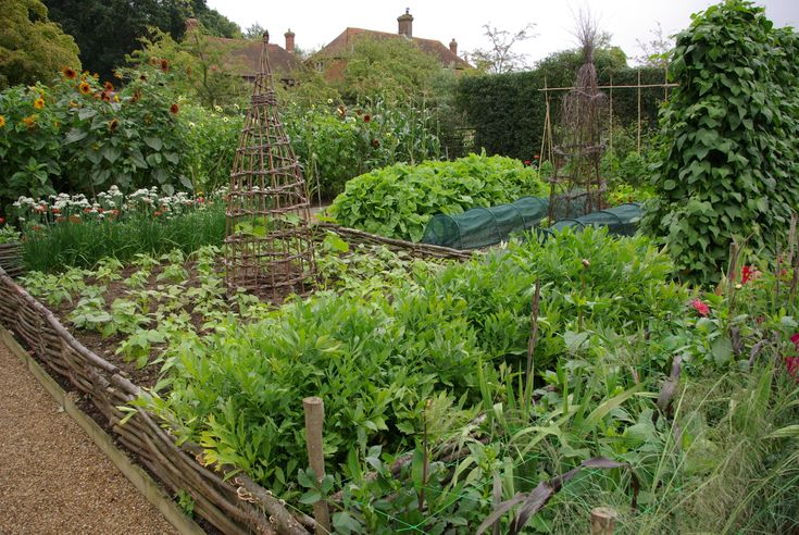 233 best edible garden design images on pinterest for Kitchen garden fence
