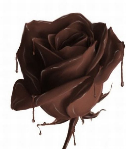 Dripping Chocolate Rose 38 Beautiful Chocolate Sculptures