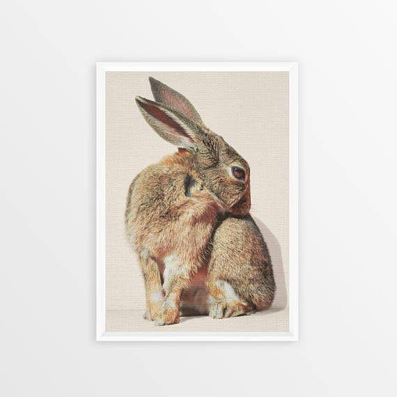 Funny animal Rabbit Print Woodlands Nursery Art Rabbit Wall