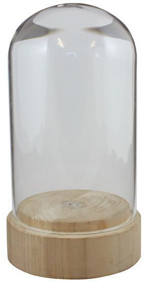 Glass & Wood Dome / cloche / kloche / specimen jar - 24cm collector display case