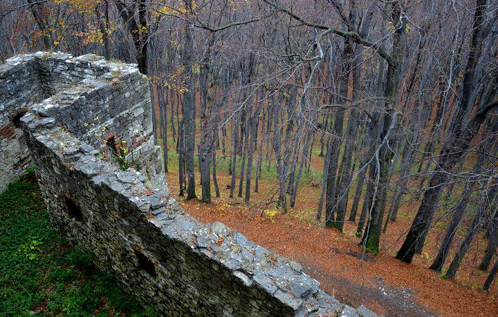 zamek lipowiec