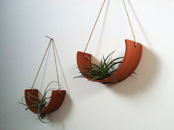Hanging Air Plant Cradle tm  Natural TerraCotta by mudpuppy, $36.00