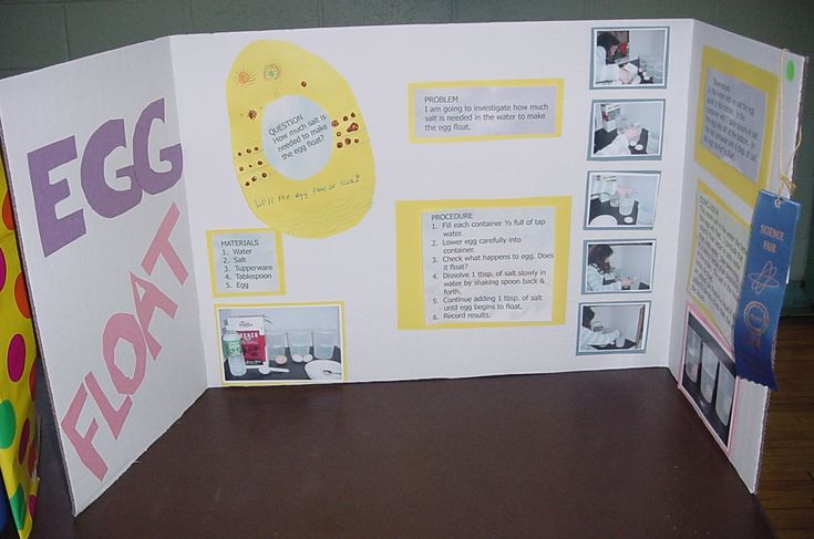 egg science project