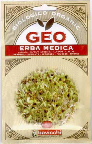 Germogli di Erba Medica Alfa Alfa Bio - Semi - Semilandia