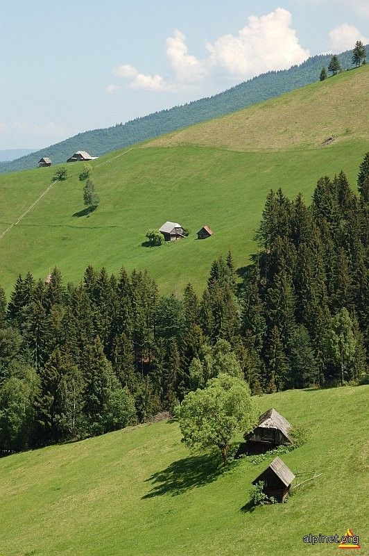 Landscape, Bucegi Mountains, Romania