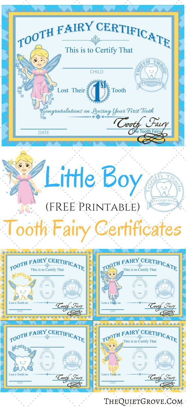 Love these Little boy Printable Tooth Fairy Certificates!