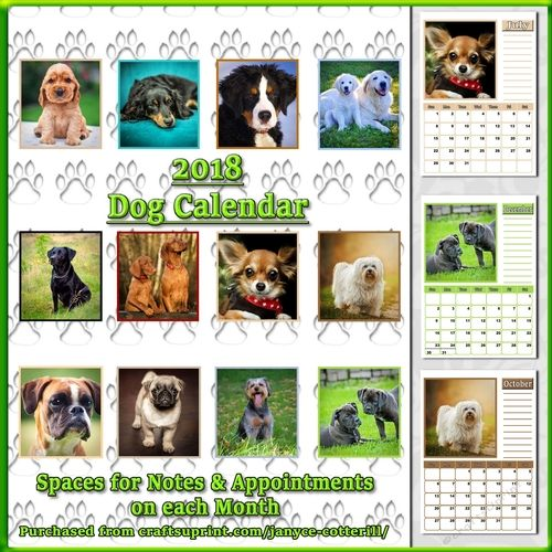 Dog Calendar Ideas : Best dog calendar ideas on pinterest photography