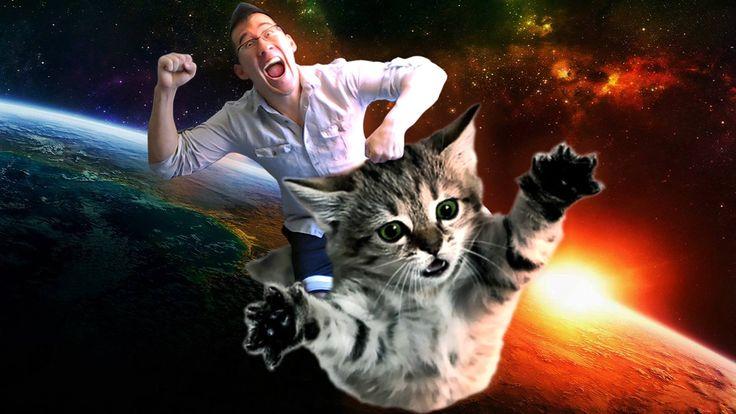 Markiplier and kitty