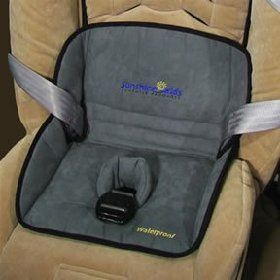 Dry Seat - Car Seat Protection $9.99  I think we might need this come potty training time