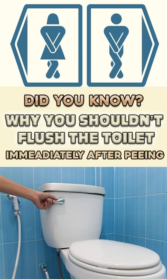 REASONS WHY YOU SHOULD NOT FLUSH THE TOILET AFTER PEEING! (MANY DO NOT KNOW THIS…)!!!!