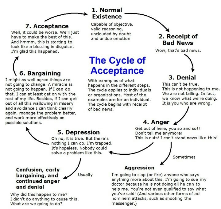 Cycle of Acceptance                                                                                                                                                                                 More
