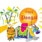 pongal wallpapers, pongal hd wallpapers, pongal 2016 wallpapers, happy pongal wallpapers, pongal wallpapers for pc