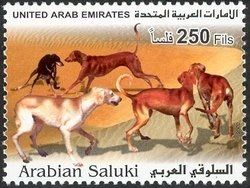 Stamp: Saluki (Canis lupus familiaris) (United Arab Emirates) (Fauna) Mi:AE 677,WAD:AE006.02