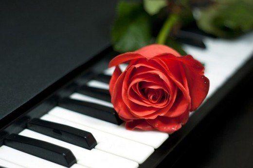 Жизнь — как фортепиано.  Белые клавиши — это любовь и счастье. Черные — горе и печаль. Чтобы услышать настоящую музыку жизни, мы должны коснуться и тех, и других.