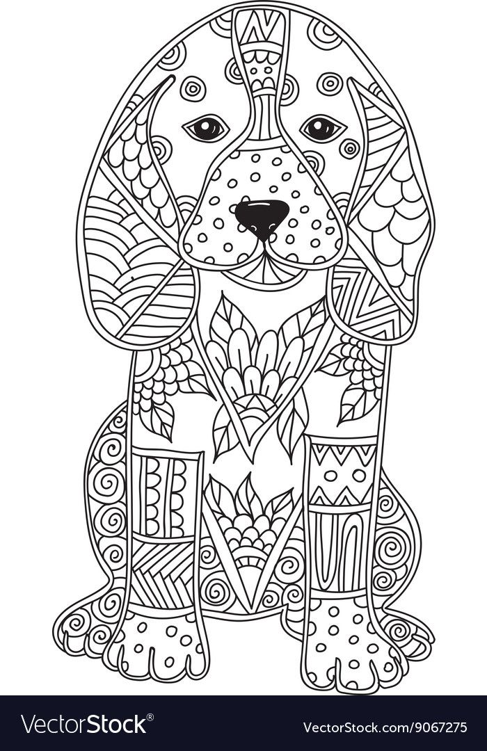 Dog Adult Antistress Or Children Coloring Page Vector Image On