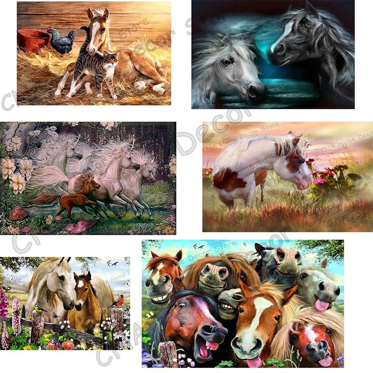 Horses 5D Diy Diamond Embroidery Painting Square Mosaic Drill Resin Animals full 3D Cross Stitch Kits Home Decoration sticker