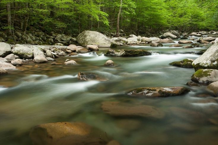 Greenbrier Campground in the Smoky Mountains - Camping Near Gatlinburg, TN