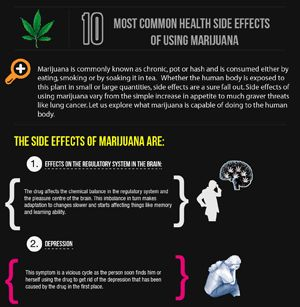 the side effects of the legalization of marijuana Not quite half of under-30 crowd support legalization of marijuana significant differences by party, age and gender emerge the opinion of 18- to 29- year olds related to the legalization of marijuana has remained unchanged since the last time that we asked this question in the spring of 2013.