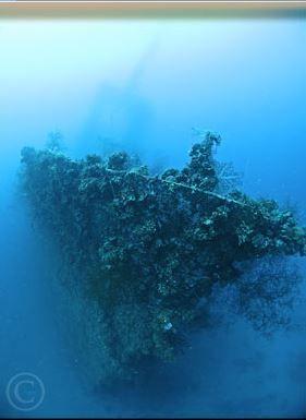 Palau & Truk Lagoon 16 - Atlantis Berlin Wassersport & Mee(h)r